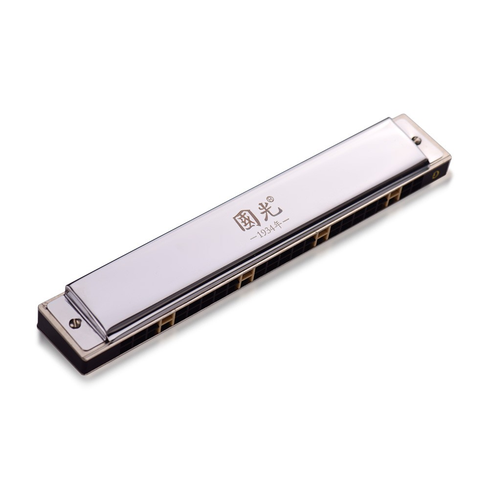 24 Holes Key of G Tremolo Harmonica Stainless Steel Mouthorgan Professional Harmonicas with Case and Cleaning Cloth