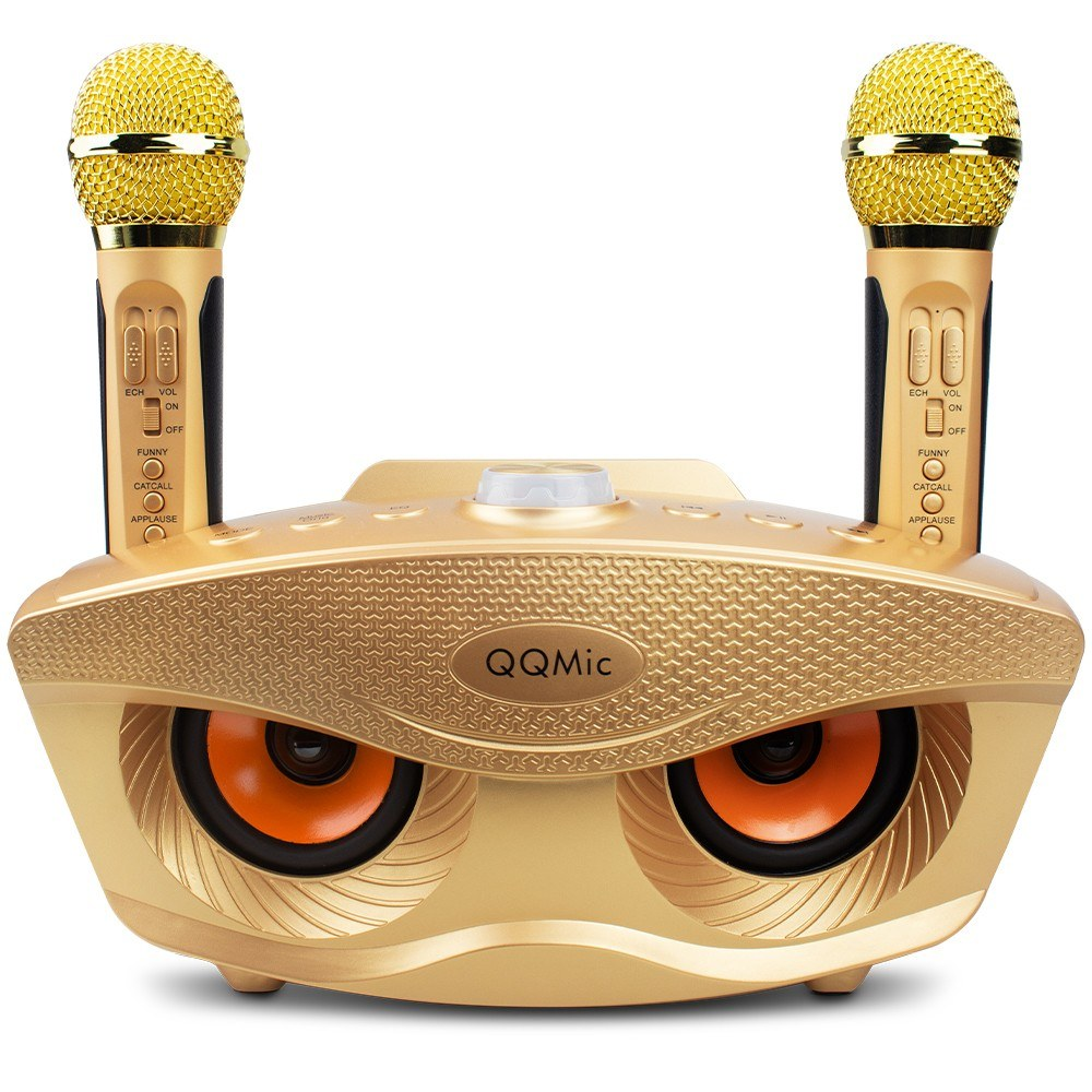 QQ-Mic Rechargeable BT Speaker with 2 Microphone Portable Speaker for Kids Adults